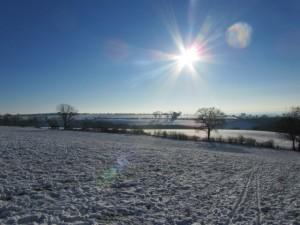 2213030_acf994ee Snowy fields